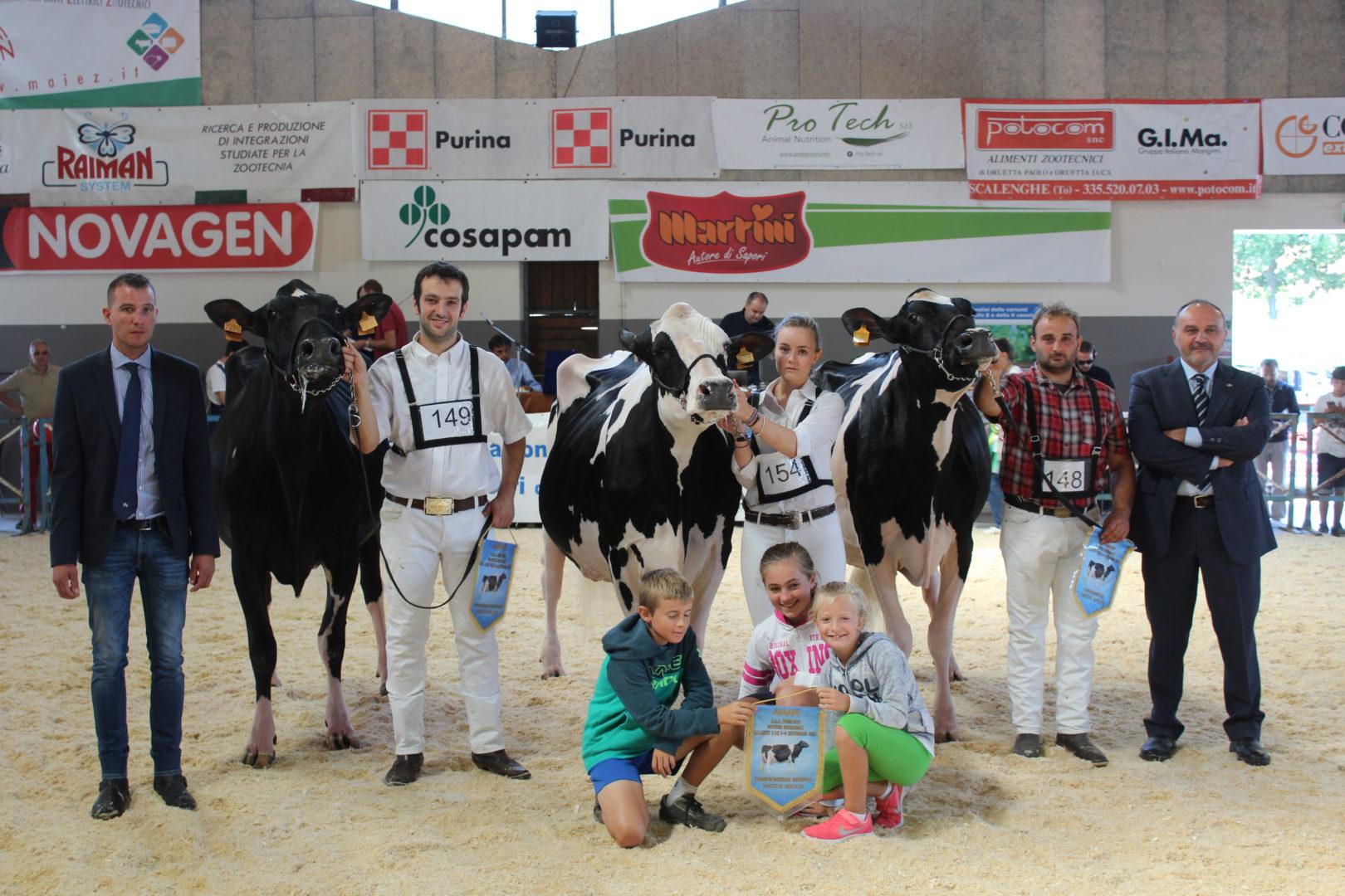 Vincitori_vacche_Adulte