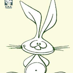 mostra coniglicoltura Santhià